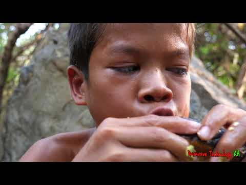 Xxx Mp4 Primitive Technology Eating Delicious Cooking Eel In Wild Edibles 3gp Sex