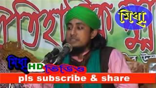 বাংলা ওয়াজ মাওলানা মূফতী গিয়াস উদ্দিন আত তাহেরি। 2015 part04