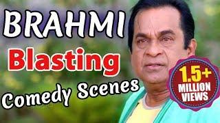 Brahmanandam Blasting Comedy Scenes - Weekend Comedy Scenes