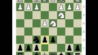 Chess Openings: How to Play the Sheveningen & Classical Sicilians!
