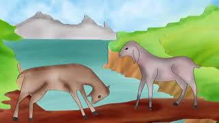 Story of Two Goats-२ बाख्राको काहानी