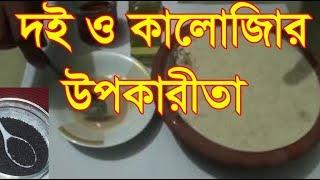 Curd and Kala Jeera Health Benefits I Kala Jeera Health Benefits by Bangla health Tips