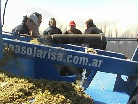 Extractora de Forrajes AR 810