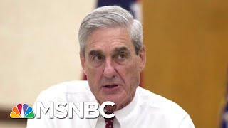 Robert Mueller Report Says 'It Does Not Exonerate' President Donald Trump | The Last Word | MSNBC