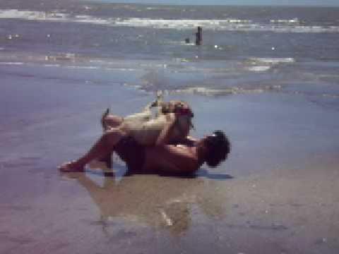 Zoofilia en la playa XD Costa del este