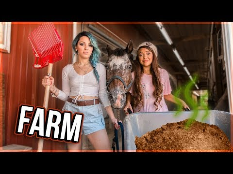 Twins Try Working on a Farm