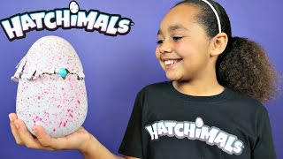 NEW HATCHIMALS MAGICAL SURPRISE EGG OPENING! Kids Toy Review | Toys AndMe