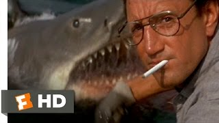 You're Gonna Need a Bigger Boat - Jaws (4/10) Movie CLIP (1975) HD