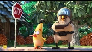 Angry Birds - A film - Filmklip #1 (6)