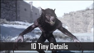 Skyrim: Yet Another 10 Tiny Details That You May Still Have Missed in The Elder Scrolls 5 (Part 24)