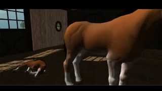 Virtual Horse Ranch 3D introducing the Foal & More!