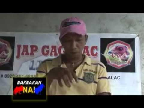 probiotic yogart Jap Gagalac