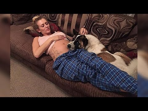 Xxx Mp4 This Pregnant Woman S Dog Wouldn T Stop Crying Then She Realized It Was Trying To Warn Her 3gp Sex