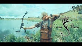 Pesca De Carpas Con Arco En CaZa Y Pesca