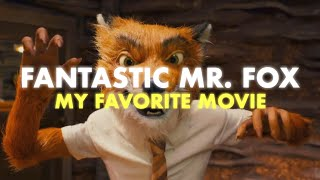 Fantastic Mr. Fox: My Favorite Movie   Video Essay