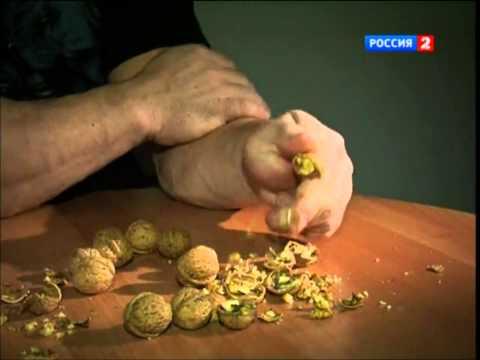 Denis Cyplenkov VS Walnuts