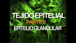 Tejido Epitelial [Parte 2] | Histología