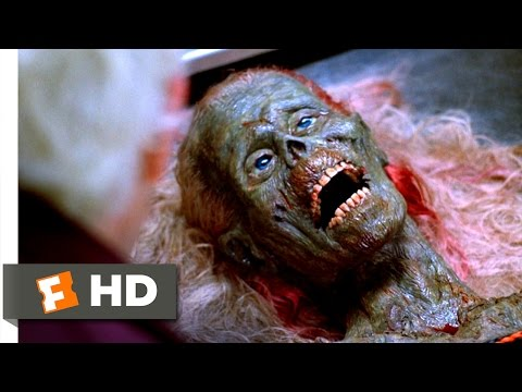 Xxx Mp4 The Return Of The Living Dead 9 10 Movie CLIP Why Do You Eat People 1985 HD 3gp Sex
