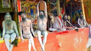 Naga Sadhu in Gangasagar Mela 2017 in West Bengal, India