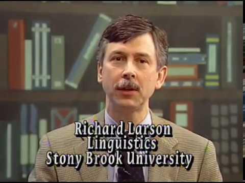 Xxx Mp4 Quot Chomsky On Evolution Quot Stony Brook Interview 3 With Richard Larson 3gp Sex