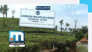 Revenue Dept To Assert Ownership Rights Over Plantations | Mathrubhumi News