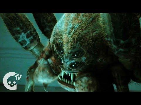Octophobia Short Horror Film Crypt TV