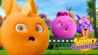 Cartoons for Children | Sunny Bunnies SUNNY BUNNIES THE TELEVISION | Funny Cartoons For Children
