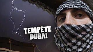 MON NOUVEL ANIMAL DE COMPAGNIE ! (Vlog Dubaï) - TIM