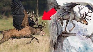 5 كائنات أسطورية موجودة على أرض الواقع !!