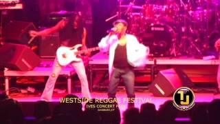Beres Hammond (I Feel Good) Live WestSide Reggae Festival at Ives Concert Park in Danbury, CT.