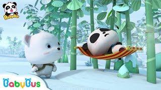 Who is the Real Panda Kiki? | Baby Panda