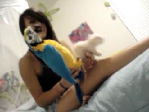 animal porn XXX
