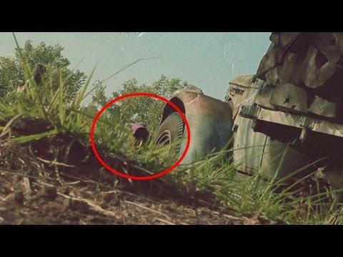 La increíble historia del Duende Carpintero Elfo Gnomo