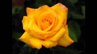 Bangla folk song - Sheet gelo basonto elo re - Neena Khan.wmv