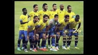 محمد عواد حارس الاسماعيلي