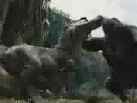 King Kong vs T-REX 2