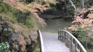 Le jardin japonais ou le pouvoir de la nature - Japanese garden or power of nature - 庭