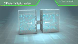 3D Scientific Animation - Diffusion and Osmosis