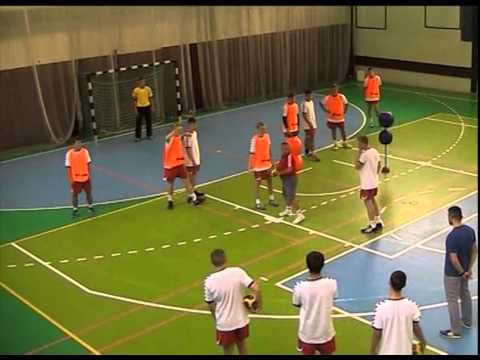 Individual and Group Pass-Shot Exercises by Wolfgang Pollany
