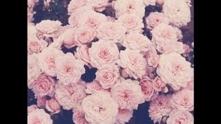 Joey Bada$$ Type Beat | roses | prod. by P.SOUL