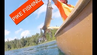 PIKE FISHING on Canoe - Old Women Bay Lake Superior Provincial Park