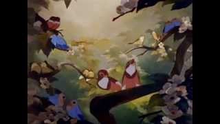 Animash - Shouts Of Joy - Roni Roni