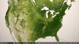 Plant Life Distribution on Our Planet Earth | NOAA Space Science Full HD Video
