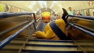 Sumo Wrestling In Public