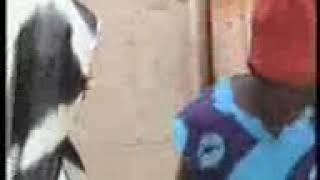 Rikicin ibiro da