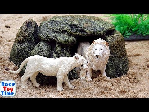 Toy Wild Animals Adventure in the Safari Sandbox Learn Animal Names Video