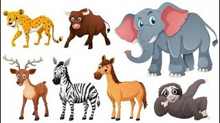 Animals Names and Sounds | Learning Animal Names |  Animal Sounds and Names