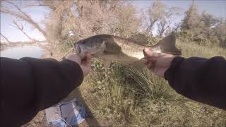 Mather Lake bed fishing redemption 4/21/2018