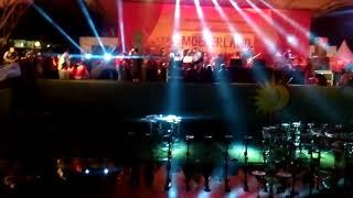 S.I,D TV Brain live Jungle Fest Bogor osd (cirebon).