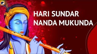 Hari Sundar Nanda Mukunda | Krishna Bhajan | Art of Living